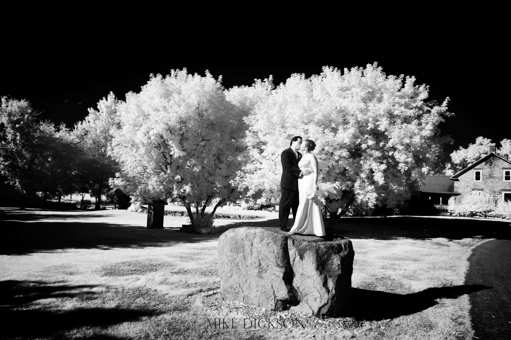 IR Katherine, Magic, Ontario, Ottawa, Stanley's Old Maple Lane Farm, STD, Summer, Wedding, © Mike Dickson