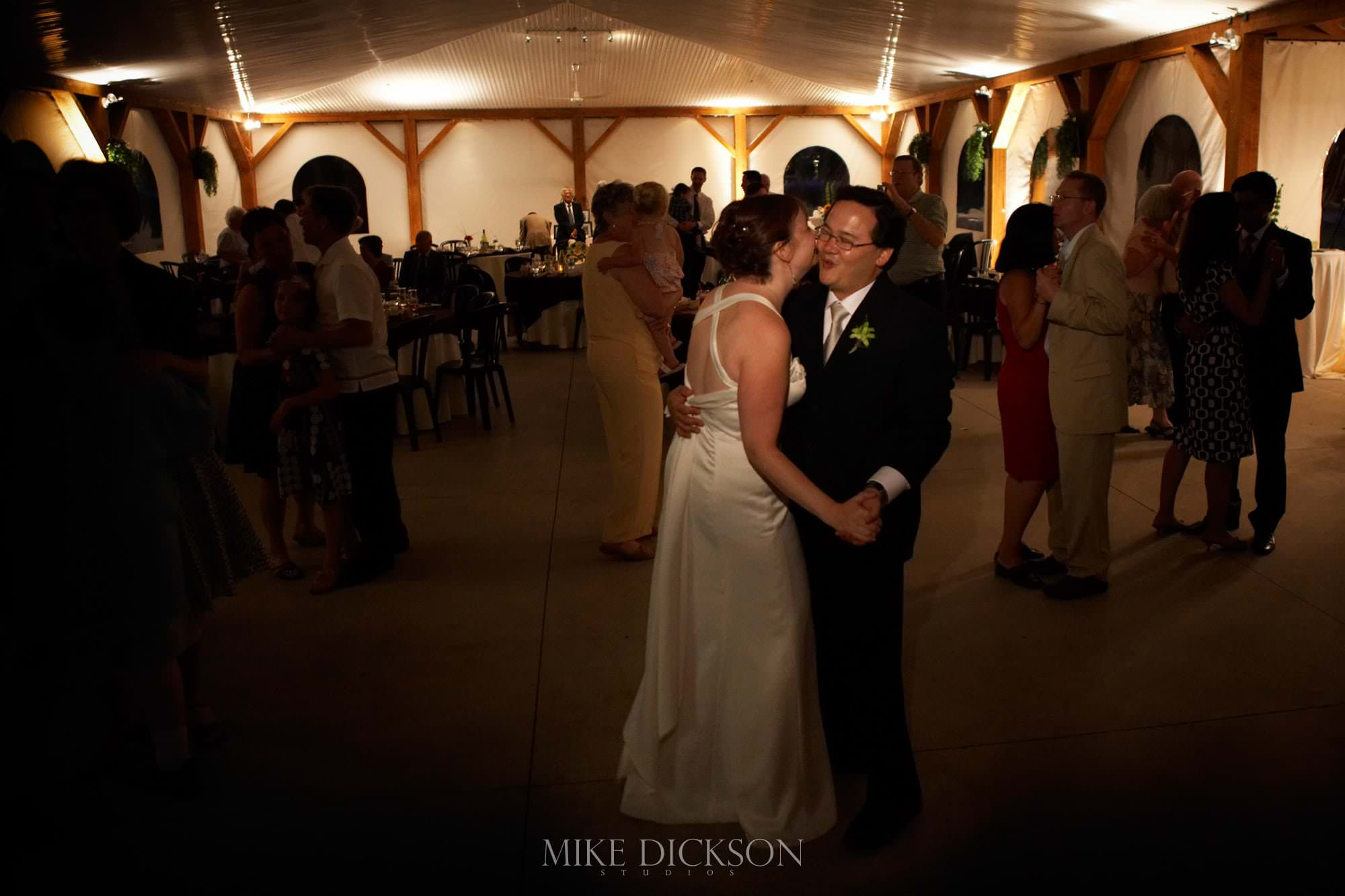 Celebration, Ontario, Ottawa, Stanley's Old Maple Lane Farm, STD, Summer, Wedding, © Mike Dickson