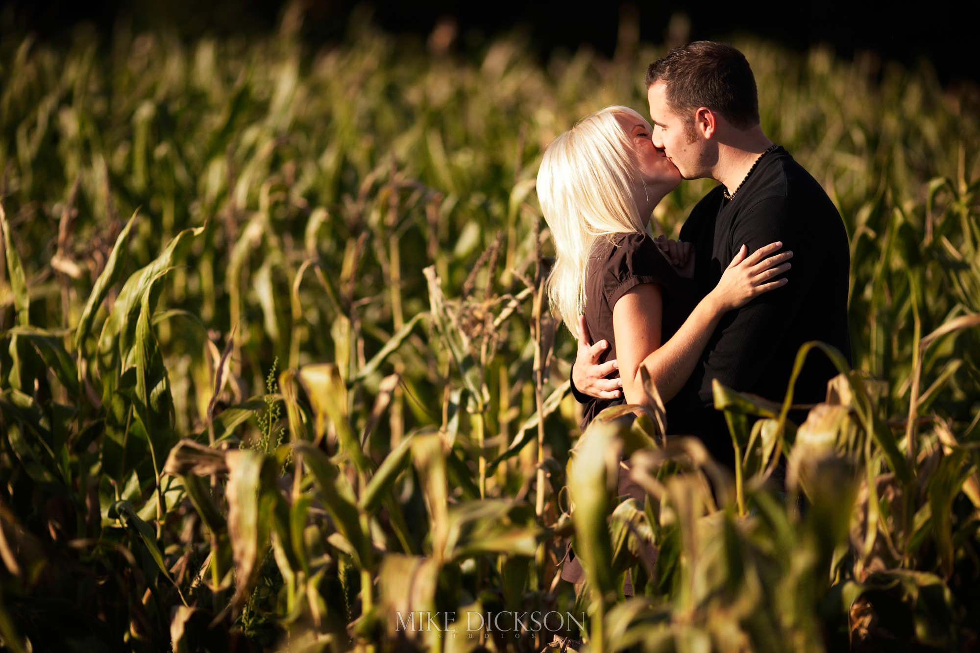 Autumn, Engagement, Experimental Farm, Fall, Ontario, Ottawa, © Mike Dickson