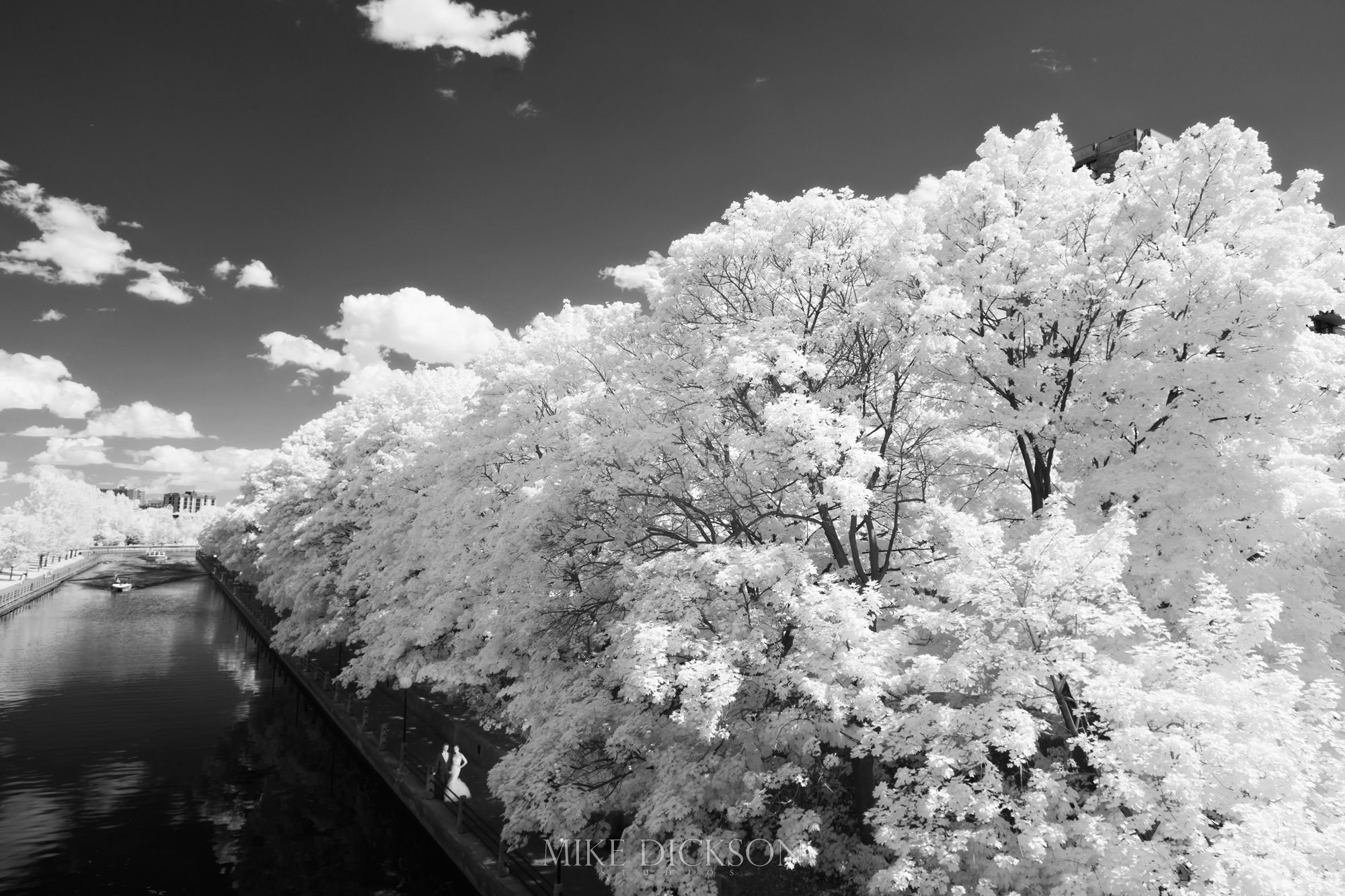 Byward Market, Infrared, Magic, Ontario, Ottawa, Photography, Rideau Canal, Summer, Time of Year, Wedding, © Mike Dickson