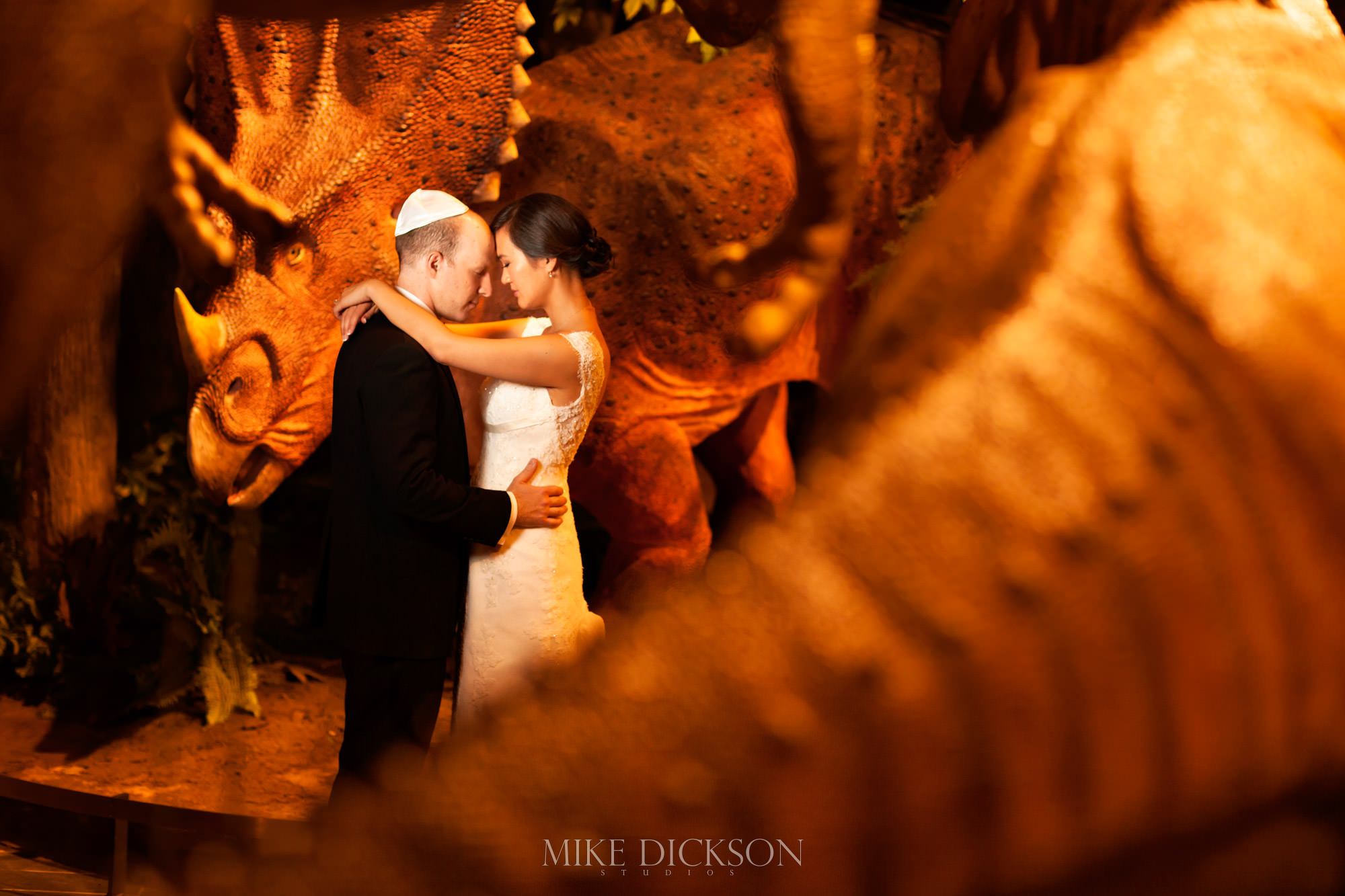 Museum of Nature, Ontario, Ottawa, Summer, Wedding, © Mike Dickson